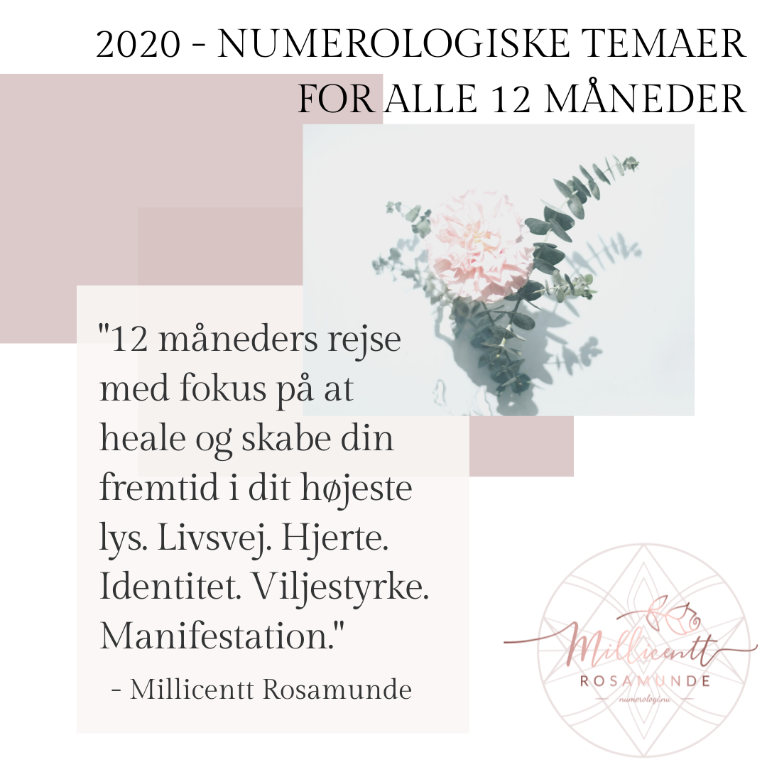 2020 numerologi - temaer for alle 12 måneder - Millicentt Rosamunde
