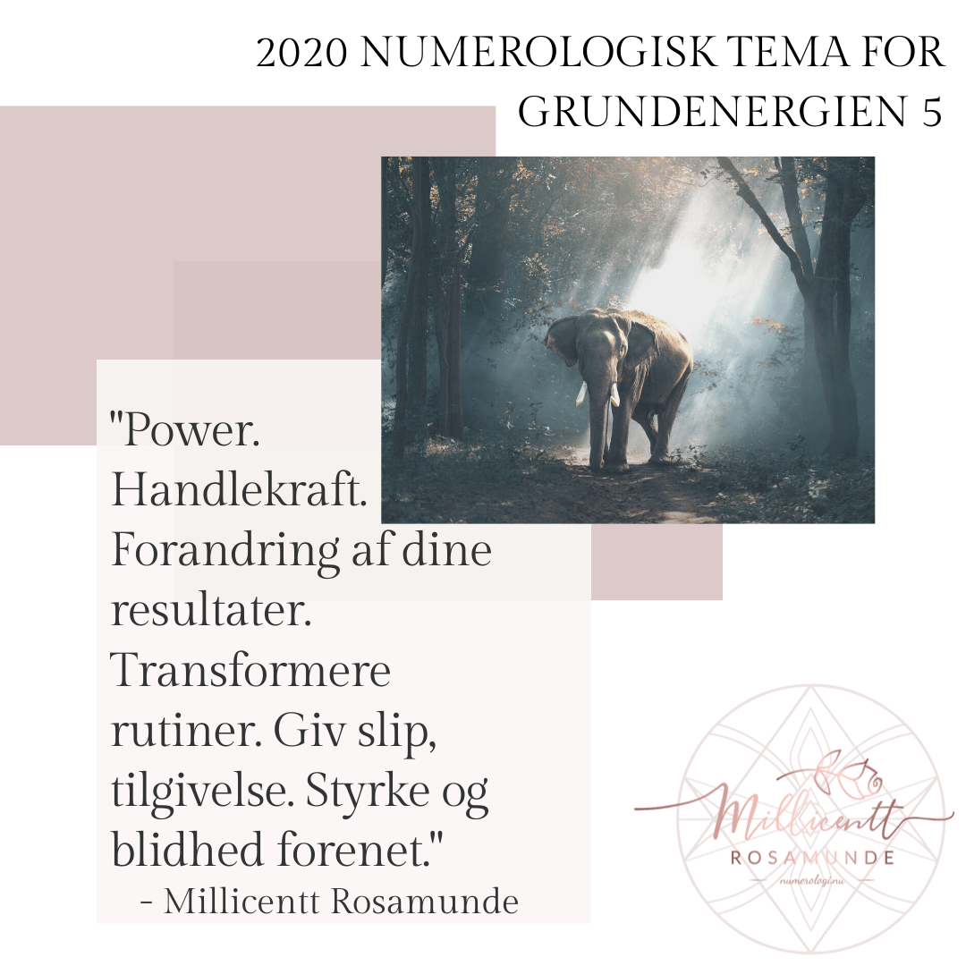 2020 - Numerologisk Tema for Grundenergien 5 - Millicentt Rosamunde