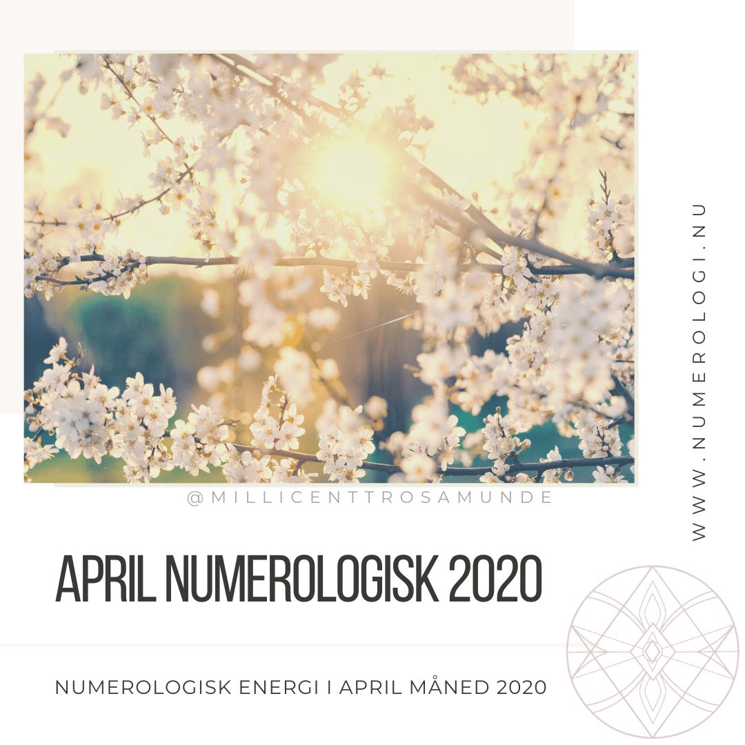 Numerologisk energi i april måned i 2020 - coronavirus coronakrise -numerolog Millicentt Rosamunde