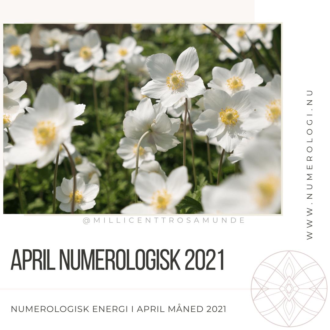 Numerologisk energi april måned 2021 - klassisk numerolog Millicentt Rosamunde