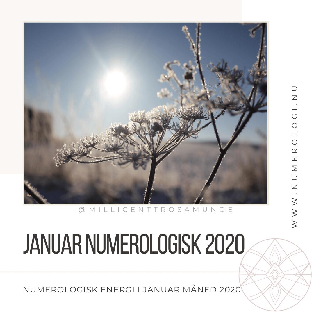 Numerologisk energi i januar måned 2020 - Millicentt Rosamunde - den klassiske numerologi