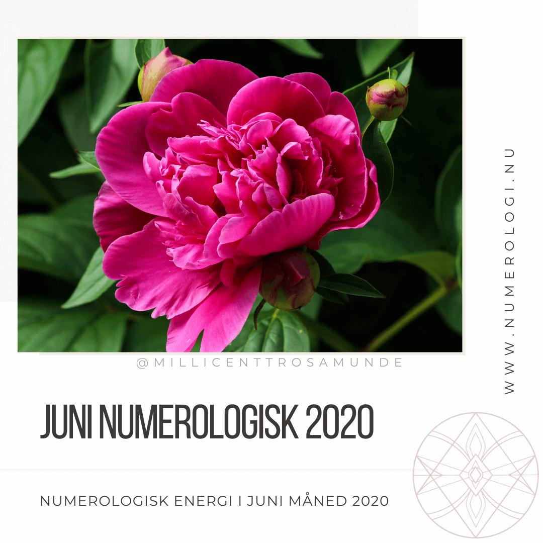 Numerologisk energi juni måned 2020 - numerolog Millicentt Rosamunde