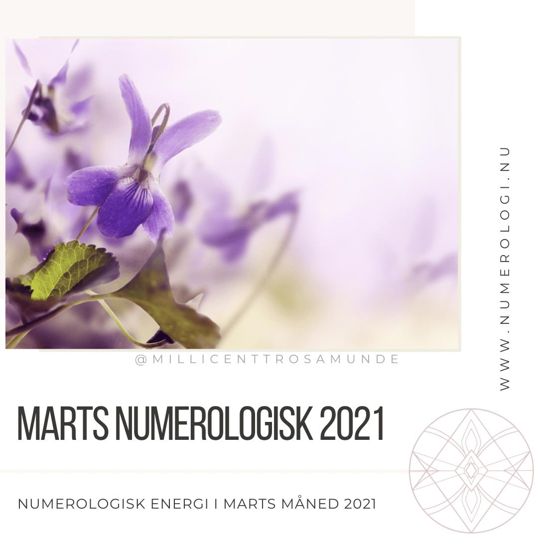 Numerologisk energi marts måned 2021 - klassisk numerolog Millicentt Rosamunde