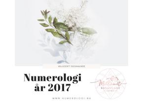 Numerologisk energi i år 2017 - Match numerolog Millicentt Rosamunde - match numerolog uddannelse