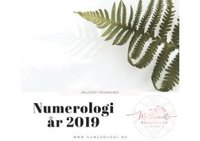 Den numerologiske energi i år 2019 - Match Numerolog Millicentt Rosamunde