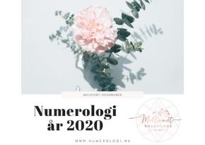 Den numerologiske energi år 2020 - psykolog numerolog Millicentt Rosamunde