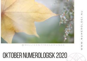 Numerologisk energi i oktober måned 2020 - klassisk numerolog Millicentt Rosamunde