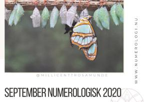 Numerologisk energi i september måned 2020 - klassisk numerolog Millicentt Rosamunde